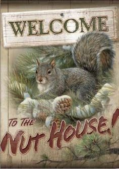 """Welcome to the Nut House Flag by Flag Trends. $19.95. Large Size 28"""" x 40"""". Double Sided Flag. Welcome to the Nut House Squirl Flag Large Double Sided Decorative Flag is 28 in. x 40 in. and readable on both sides. These are Permanent Dye Outdoor Flags that feature """"Dura Soft"""", an innovative fabric designed specifically for decorative flags. The 3-ply construction is heavier and more durable than the competition, yet maintains the softest feel in the market today. As an added Bonu..."""
