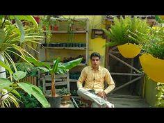 Organic Liquid Fertilizer, Home Repairs, Youtube, Diy, Bricolage, Do It Yourself, Youtubers, Homemade, Diys