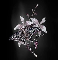 Jack du Rose Poison Moth in white gold, pink tourmaline and black, white and pinkdiamond.