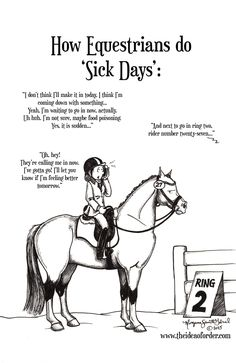Funny Horse Memes, Funny Horse Pictures, Funny Horses, Cute Horses, Pretty Horses, Horse Love, Horse Girl, Horse Humor, Equestrian Memes