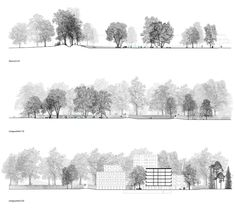 Section Drawing Architecture, Site Analysis Architecture, Plans Architecture, Concept Architecture, Landscape Architecture, Architecture Design, Photoshop Design, Tree Photoshop, Photoshop Rendering