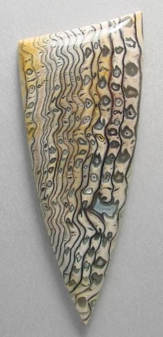 Cabochon of petrified wood, an unsual and rare form from Hell's Canyon near the Idaho/Oregon border. Cabochon cut by Sam Silverhawk