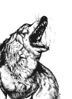 ImageFind images and videos about art, drawing and wolf on We Heart It - the app to get lost in what you love. Wolf Tattoos, Body Art Tattoos, Animal Drawings, Art Drawings, Snarling Wolf, Werewolf Art, Anime Wolf, Art Studios, Black Art
