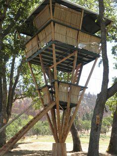 Hill Hooch Treehouse