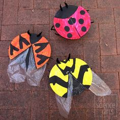 How to make a ladybird (ladybug) craft with hidden wings! And learn about three different ladybird species. Fun biology entomology nature science activity for kids