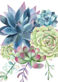 Watercolor Succulents, Watercolor Cactus, Watercolor Walls, Watercolor Paintings, Succulents Painting, Succulents Art, Cactus E Suculentas, Succulent Wall Art, Succulent Water Color