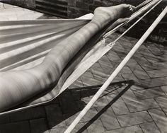 Edward Weston  Legs in hammock, Laguna, 1937