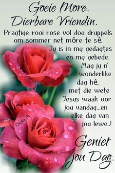 Cute Good Morning Quotes, Morning Qoutes, Morning Inspirational Quotes, Good Morning Messages, Good Morning Greetings, Good Morning Good Night, Good Morning Wishes, Day Wishes, Lekker Dag