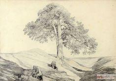 """Maksymilian OBORSKI ● PEJZAZ z DRZEWEM, 1871 ● rysunek ołówkiem, 27,5 x 39,5 cm w świetle passe-partout, datowany u dołu po prawej """"11 /871"""""""