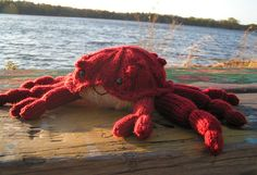 free knitting pattern for king crab toy and more sea - free knitting pattern f . : free knitting pattern for king crab toy and more sea – free knitting pattern für king crab toy und mehr meer Animal Knitting Patterns, Stuffed Animal Patterns, Crochet Patterns, Fun Patterns, Stuffed Animals, Summer Knitting, Free Knitting, Baby Knitting, Knit Or Crochet