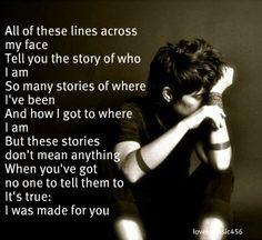 Brandi Carlile, The Story