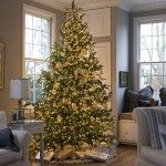 Lots of Christmas tree inspiration