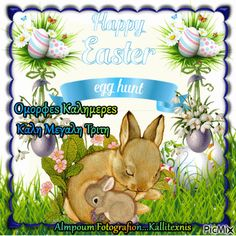 Easter Hunt, Happy Easter, Happy Easter Day