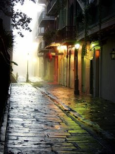 Foggy, Pirates Alley, New Orleans, Louisiana