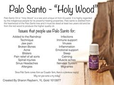 Palo Santo the Holy Wood has so many benefits! How do you use this oil?  www.theoildropper.com