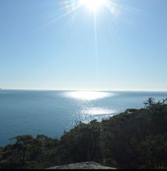 Travelling is about finding those things you never knew you were looking for.  #adventure #Australia #travelblog #explore #wilsonsprom #travelshare #pictures #nature #insta_nature #sunlight Wilsons Prom, Sunlight, Travelling, Australia, Explore, Adventure, Sunset, Beach, Water