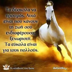 """.....γιατί ο """"πόλεμος"""", που λέγεται ζωή, κερδίζεται στη μάχη..και καμμιά μάχη δεν  είναι εύκολη!!!!!!!!.. Special Quotes, Greek Quotes, Positive Quotes, Lyrics, Positivity, Thoughts, Proverbs, Quotes Positive, Music Lyrics"""