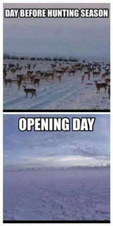 25 of the best hunting memes of all time Deer Hunting Humor, Hunting Jokes, Hunting Camo, Hunting Girls, Funny Hunting, Hunting Stuff, Girl Hunting Quotes, Dove Hunting, Whitetail Hunting
