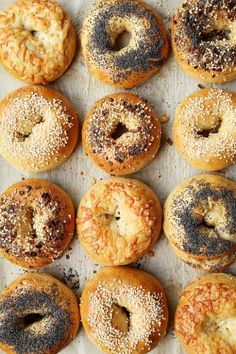 Different types of bagels inspired by the classic New York Bagels. Everything, Sesame, Poppy Seed and Asiago Cheese give you a few options to choose from! Types Of Bagels, New York Bagel, Ny Bagel, Asiago Cheese, Bagel Recipe, Comfort Food, Morning Food, Bread Rolls, Street Food