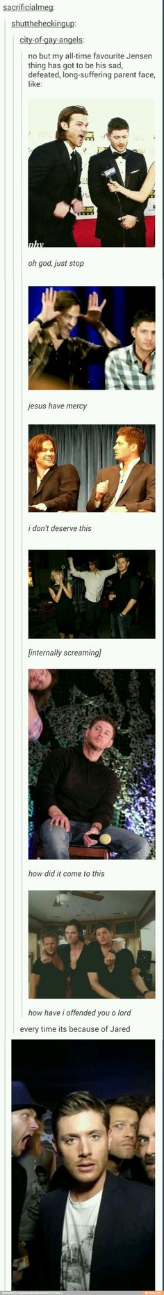 Haha look at misha in the last one. Off to the right.