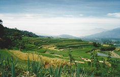 near Danau Maninjau in Agam, Sumatera Barat