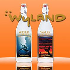 We had a 3-month waitlist before our second edition Wyland glass water bottles were released! These images were highly anticipated:) #mywatergallery #reusableglassbottles #glasswaterbottles