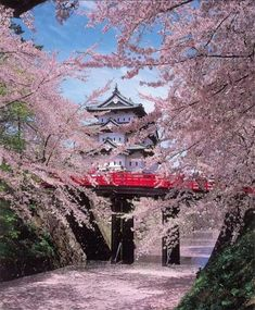 Travel Inspiration for Japan - Hirosaki Castle in spring, Japan. Places Around The World, Around The Worlds, Places To Travel, Places To Visit, Japanese Castle, Japanese Palace, Japanese Gardens, Photos Voyages, Japan Travel
