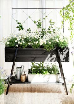 Raised garden, no trellis, to put herb garden close to kitchen window? Diy Garden, Balcony Garden, Dream Garden, Indoor Garden, Indoor Plants, Outdoor Gardens, Home And Garden, Terrace, Balcony Planter Box