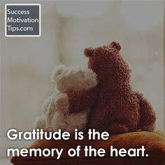 Gratitude is the memory of the heart. Inspirational Thank You Quotes, Be Yourself Quotes, Gratitude, Teddy Bear, Memories, Archive, Heart, Pictures, Memoirs
