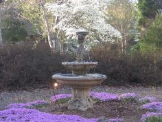 Front yard fountain in Spring
