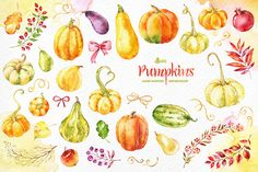 Pumpkins. Watercolor collection by OctopusArtis on Creative Market