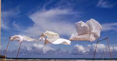 tecla-lasombradelpajaro: Bailando al viento