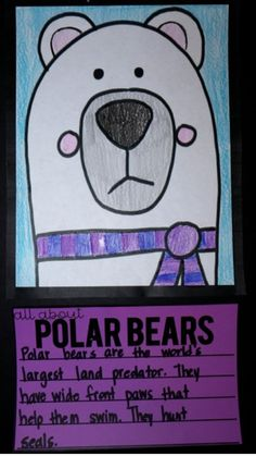 Reading in January AND a Polar Bear Directed Drawing - Step into Grade