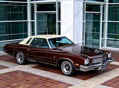 1973 Buick Regal in Brown Metallic / Sandalwood top