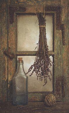 35PHOTO - Iwona Czubek - Herbes de Provence (lavender)
