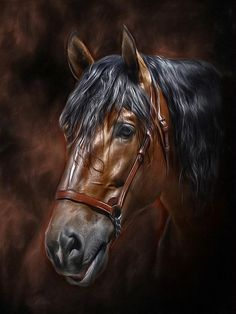 Equine Spirit by Antonio Delgado