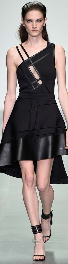 David Koma Collection Spring 2015 Ready-to-Wear https://www.pinterest.com/piko101/black-dresses-exclusive-selection/