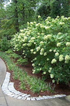 TARA DILLARD: Simple Garden Fix