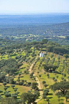 Evoramonte Area, Alentejo, Portugal