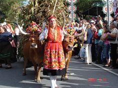 João Afonso Matos  Minho, Portugal    http://portugalmelhordestino.pt/fotos_concurso/840c9bf8a17925add15f601e9b274a3f.jpg