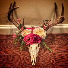 Eva Shockey's deer skull flower crown she made for her baby's nursery Deer Skulls, Cow Skull, Deer Skull Decor, Deer Antlers, Deer Head Decor, Deer Heads, Bull Skulls, Deer Mounts, Antler Art