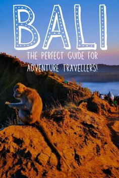 2 Week Bali Travel Itinerary | World travel. An EPIC Bali trip with the most awesome travel experiences for you to try! This Bali travel guide is full of great tips and packed with inspirational Bali travel photos! #bali #balitraveltips #traveldestinations #balibeach #balitravelphotography