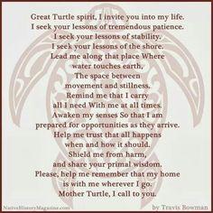 Turtlle Spirit