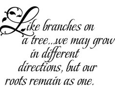 great family quote for photo wall display...imagine tree branches with pictures attached to each branch
