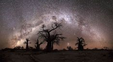 Panoramic landscape photo of the milkyway over the boabab trees of Kubu Island in Botswana by hougaard malan Chobe National Park, Evening Sky, Africa Travel, Dark Backgrounds, Landscape Photographers, Landscape Photos, Nature Photos, Night Skies, Beautiful Landscapes