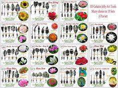 3D Gelatin Jelly Art Tools - Many Choice In 18 Set Types - 5 Pcs/Set - Ngoc Hue