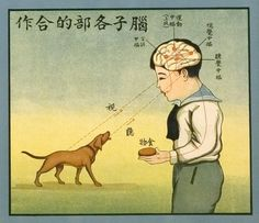 humanoidhistory:  Detail from Chinese health poster from Shanghai, circa 1933. See Spot bark. Hear Spot bark. Give Spot a snack. (National Library of Medicine)