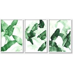 """20 x 30 """"Beverly III"""" Tropical Banana Palm Leaves Watercolor Giclee... ($64) ❤ liked on Polyvore featuring home, home decor, wall art, quote wall art, giclee posters, giclee painting, giclee wall art and typography wall art"""