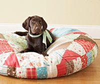 Quilt a Cozy Bed for Your Pet Quilts aren't just for people anymore! Check out this step-by-step guide to make a comfy bed for your pet. Diy Dog Bed, Pet Beds Diy, Quilting, Diy Stuffed Animals, Dog Love, Fur Babies, Your Pet, Sewing Projects, Diy Projects