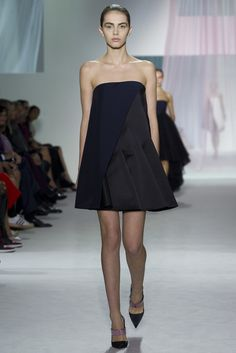 Christian Dior Spring 2013 Ready-to-Wear Fashion Show - Anja Cihoric (WOMEN)
